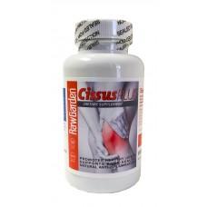 Raw Garden Cissus Plus 120 capsules
