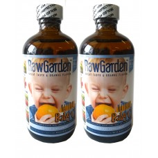 Raw Garden Baby' C Natural Liquid Vitamin C with Rose Hip, Amla, Camu Camu, Acerola 2 Pack
